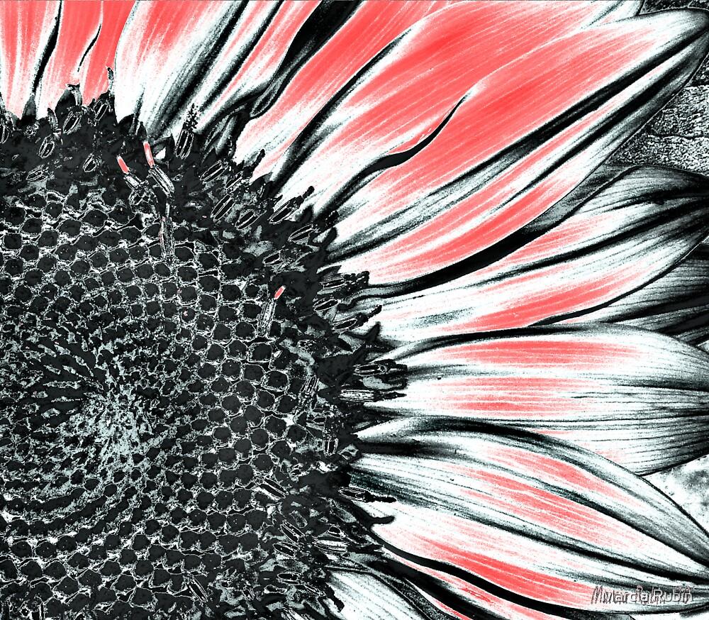 Sunflower Art by Marcia Rubin