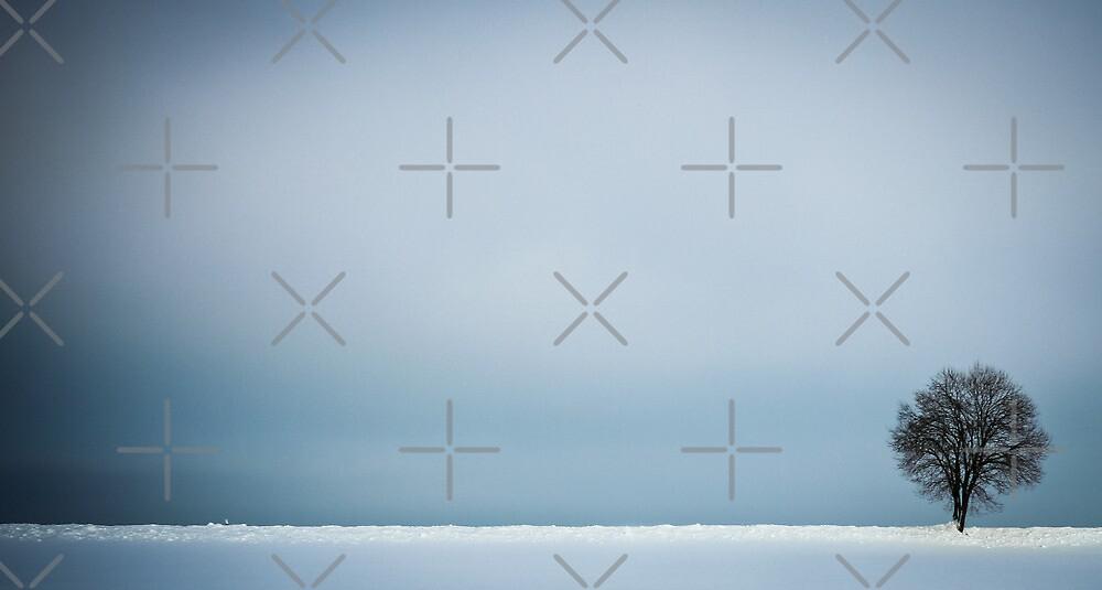 winterminimalsim by thomasrichter