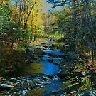 Crary Mills Stream by linmarie