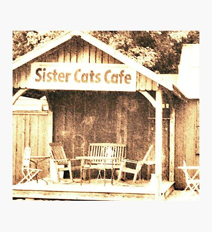 """""""Sister Cats Cafe""""... prints and products Photographic Print"""