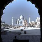 The Taj by Roddy Atkinson