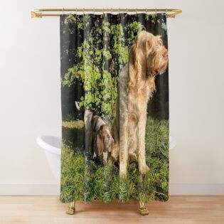 Shower Curtain