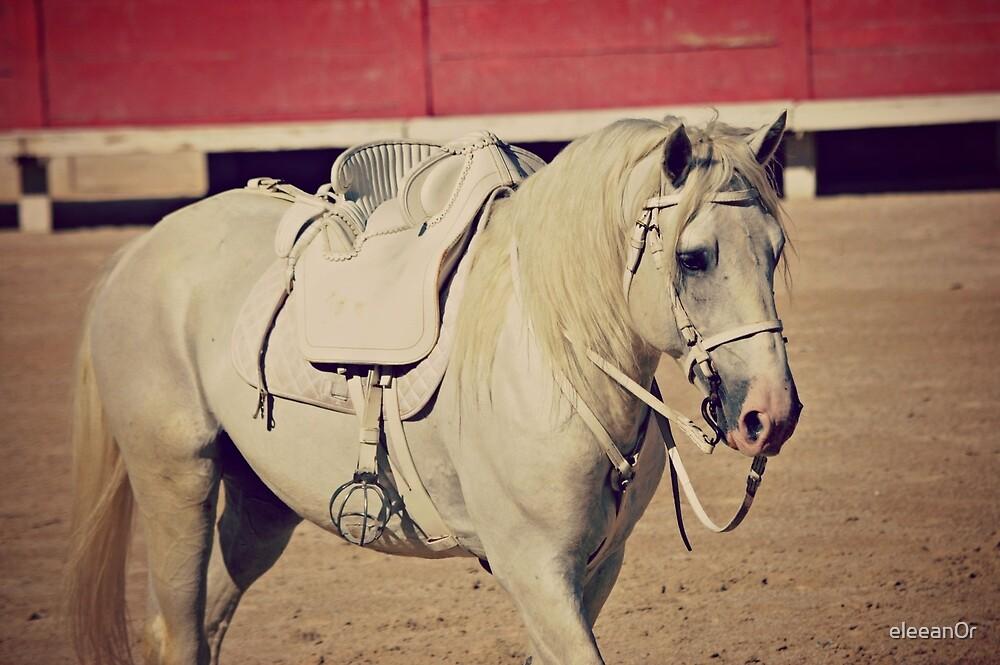 Camargue horse by eleean0r