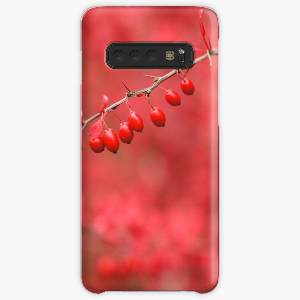 Close-up of red barberry Case & Skin for Samsung Galaxy