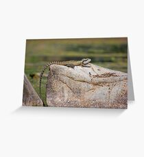 Eastern Water Dragon on a Rock Greeting Card