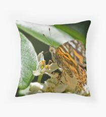 Orange Butterfly on Flower 3 Throw Pillow