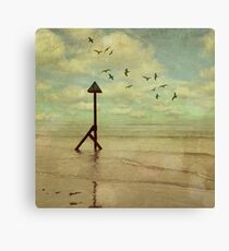 The Road of Life Pt 1 Canvas Print