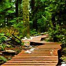 Baden Powell Boardwalk Simplified by Michael Garson