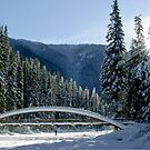 Rainbow Bridge in Winter by Michael Garson