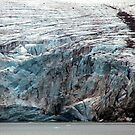 Brepollen Glacier close up by John Dalkin