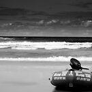 Sea Patrol by Jacob Tansey