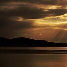 Serenity by Sarah Howarth [ Photography ]