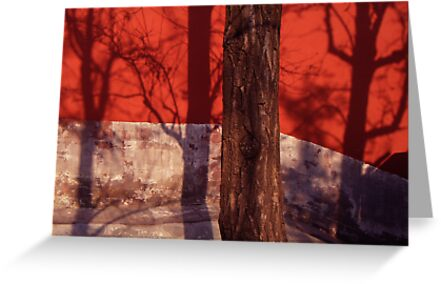 From texture to shadow by Jocelyn  Parry-Jones