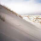 White Sands Ripples by Steven Newton