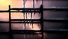 Winter Window... by C. Rodriguez