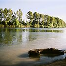 Rogers Landing - Willamette River, Newberg, Oregon by Steven Newton