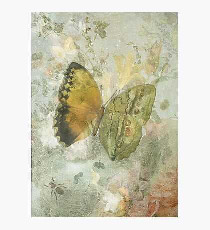 'Happiness is a Butterfly' Photographic Print