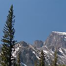 Wheeler Peak, Great Basin National Park by Steven Newton
