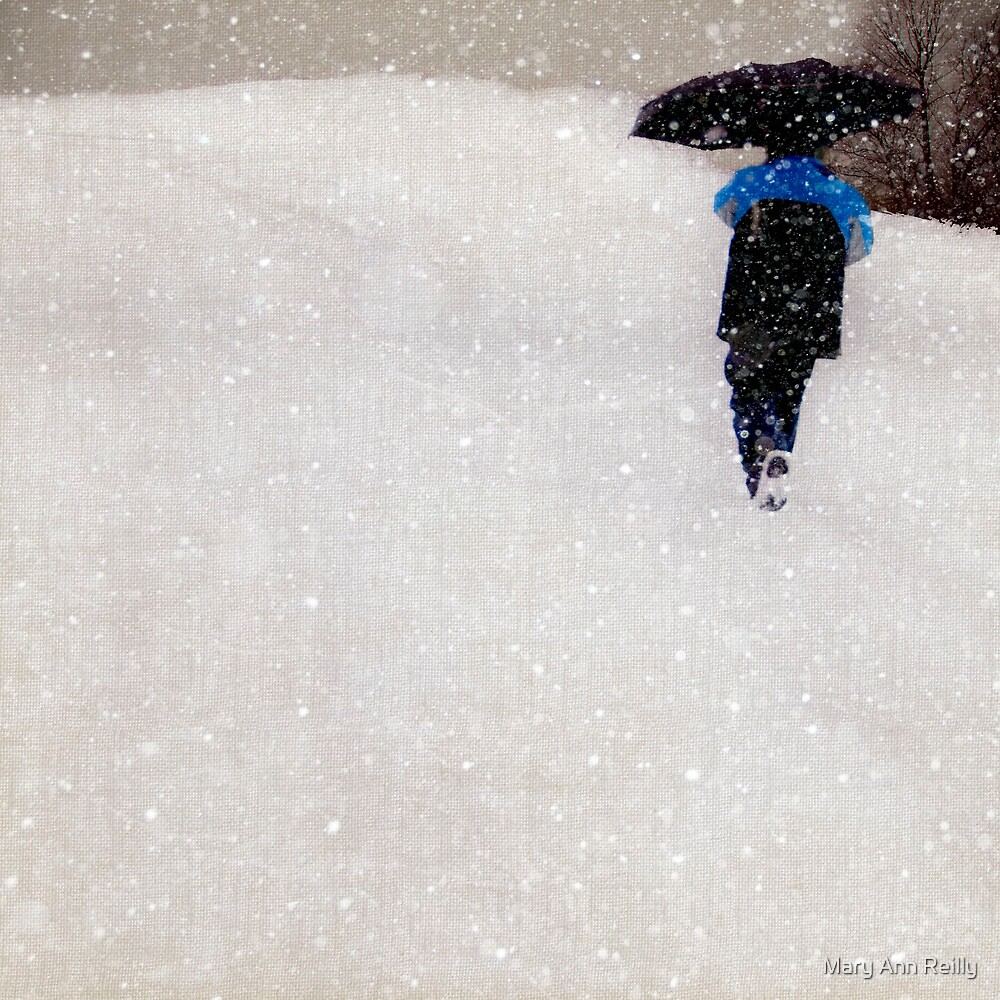 Snow is Fleeting by Mary Ann Reilly