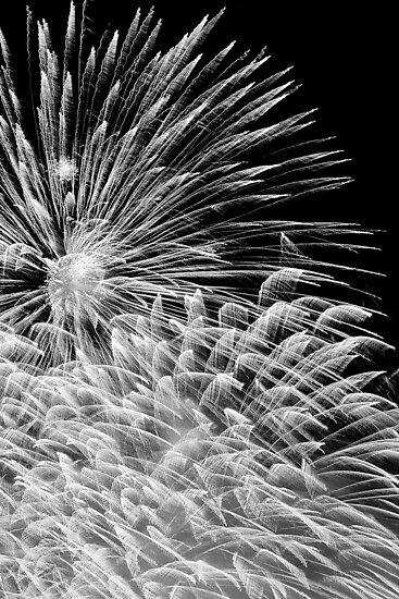 Firework Explosion (Black & White) by Richard Lam