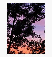 Arizona Sunset Photographic Print