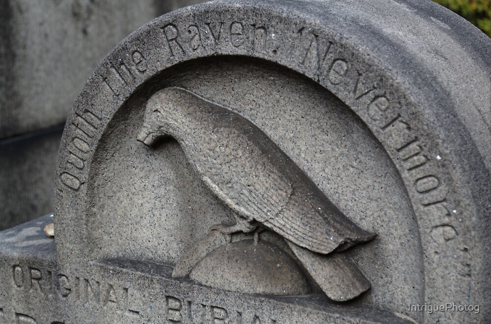 Quoth the Raven by IntriguePhotog
