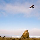 Ultralight Over California Beach by Steven Newton