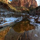 Early Morning on Pine Creek in Zion NP by Clayhaus