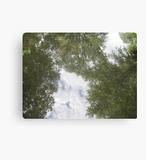 Up up and aw....HEY!! Canvas Print