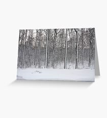 Snowstorm Aftermath Greeting Card