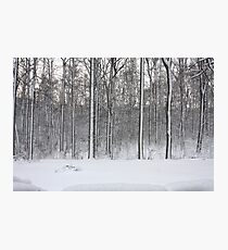 Snowstorm Aftermath Photographic Print