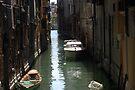 """Via Venezia by Christine """"Xine"""" Segalas"""