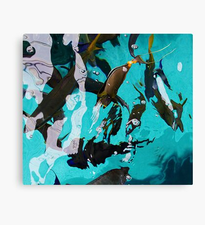 Fish From Above Canvas Print