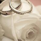 ring ring by Kieron Nolan