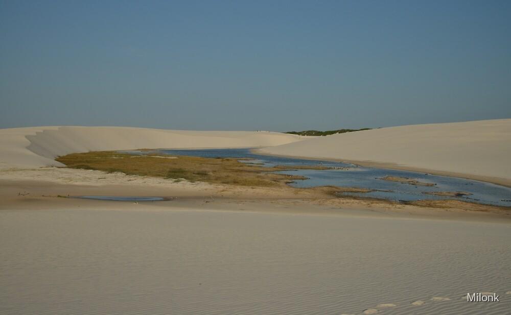 Desert lagoon  by Milonk
