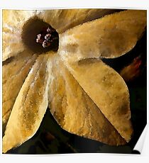 Study in Ochre: To Paint a Flower Poster