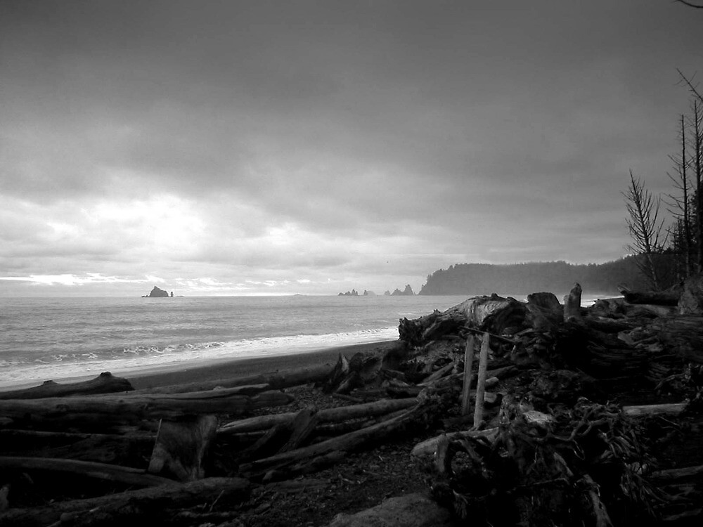 Morning on the beach - Olympic NP by Jeremy Tarpley