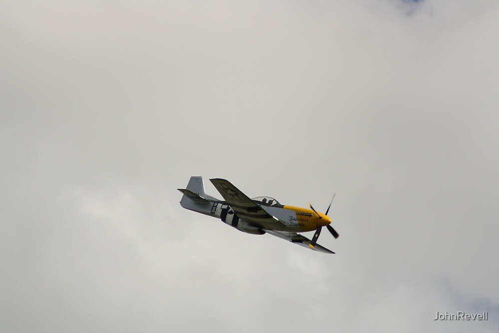 Mustang 2 by JohnRevell