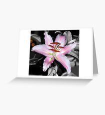 Being selective! Greeting Card