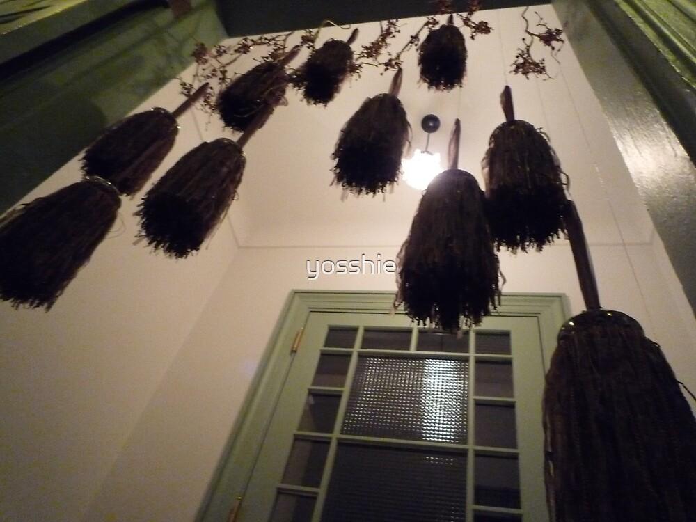 broom by yosshie