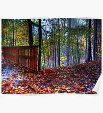 Autumn Ravine  Poster