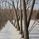 Millpond Winter Trail -2 (c) Ian Ridpath 2010 by IanRidpath