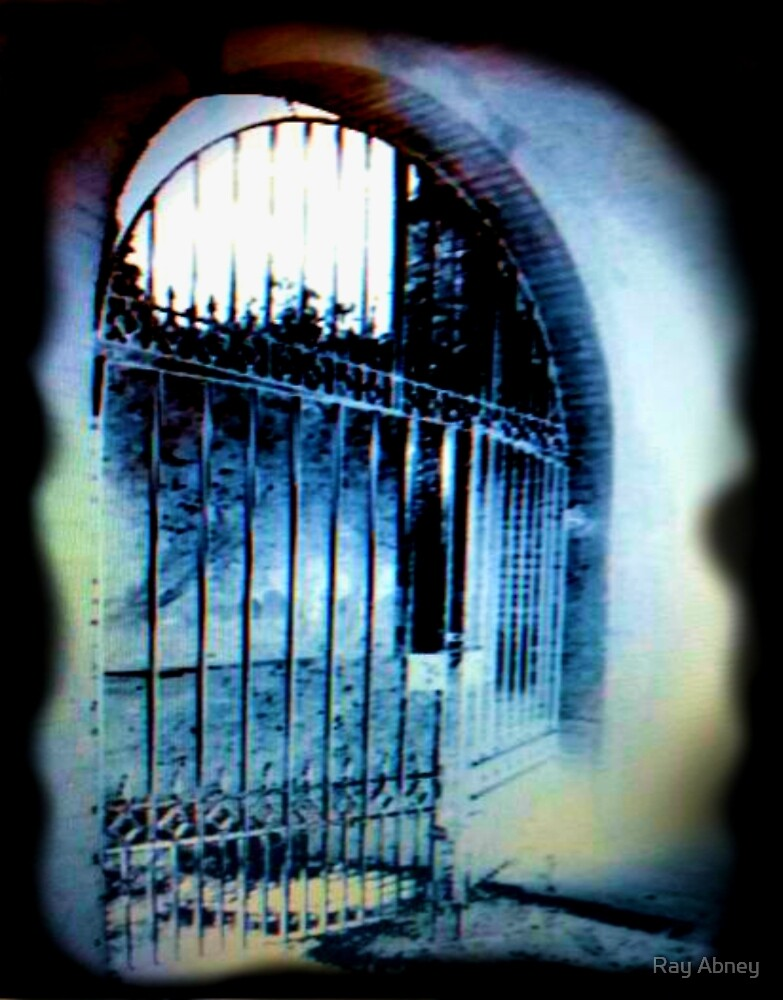 Cemetery Gates  by Ray Abney