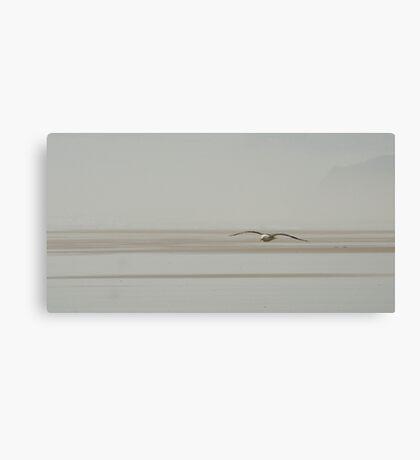 Jonathan - seagull at the beach in NZ Canvas Print