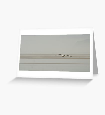 Jonathan - seagull at the beach in NZ Greeting Card