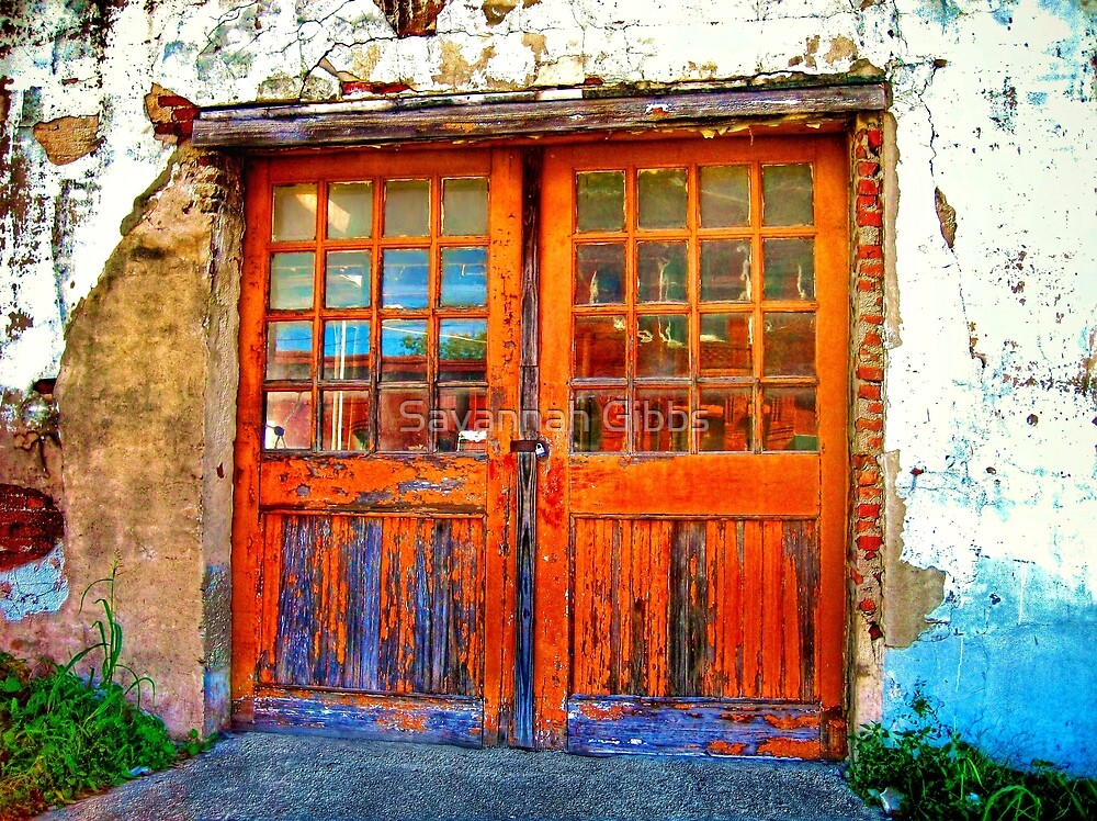 Old Doors by Savannah Gibbs