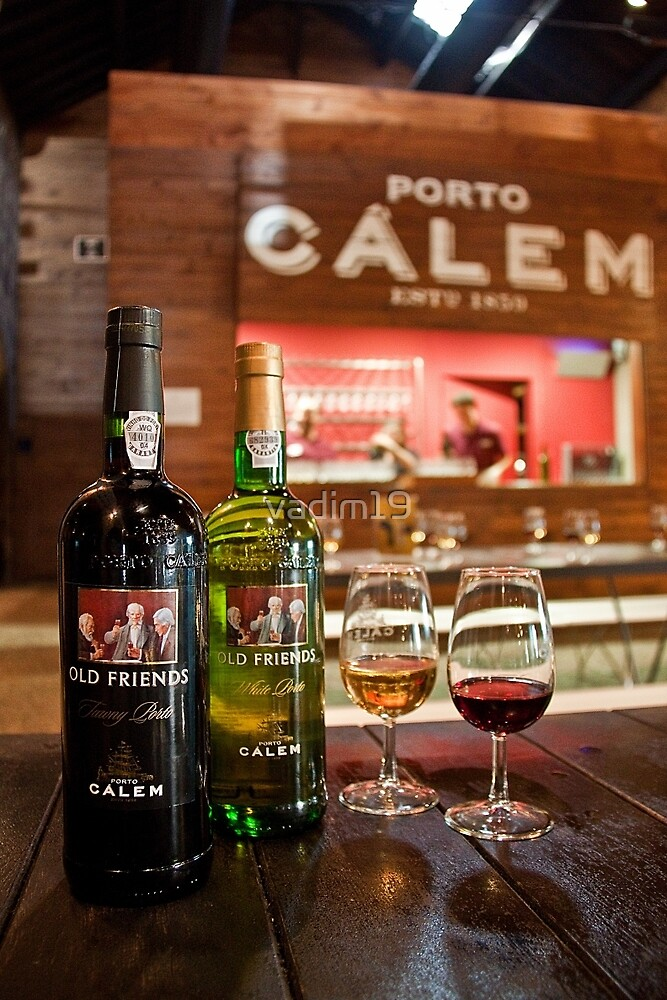 Portugal. Porto. Tasting Port Wine at the House of Calem. by vadim19