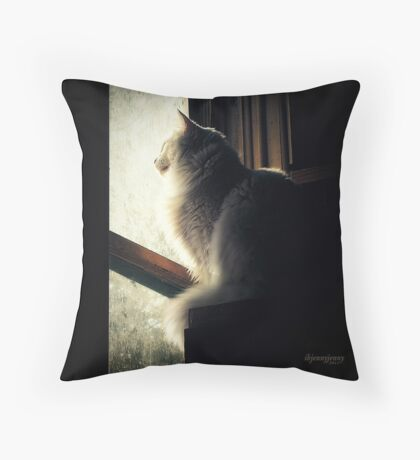 Watching Angels Fly Throw Pillow