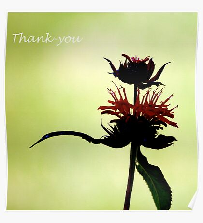 Thank-You Viv and Jean Poster
