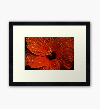 Blur Stamen: On featured work:1.The groups/chrome-mafia Group 2. Creative-talented-and-unknown Group3.Complex-simplicity Group Framed Print